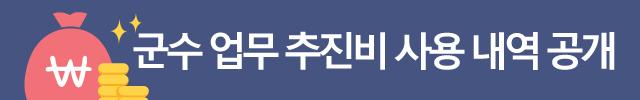 군수업무 추진비 사용내역 공개