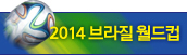2014 브라질 월드컵