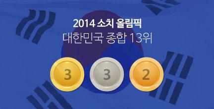 2014 소치올림픽 종합13위
